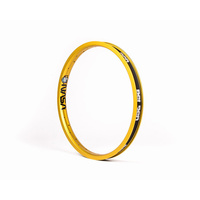 BSD Nasa Rim Rim, Gold *Sale Item*